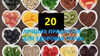 20 лучших продуктов для здоровья почек и мочеполовой системы