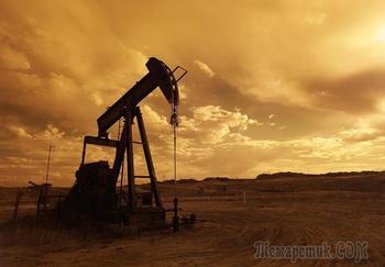 Нефть обвалилась и потянула рубль за собой