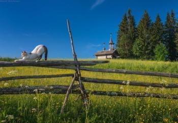 К истокам настоящей России: русские деревеньки, которые обязательно нужно посетить