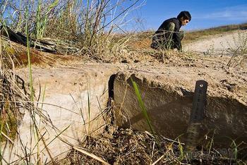 Древней дороге из каменных плит в Ростовской области 50 млн лет.