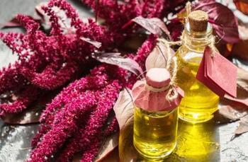 Амарантовое масло – незаменимый продукт при ожирении, диабете, варикозе и не только