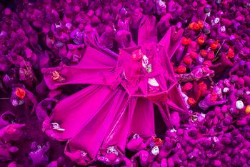 Чудеса, разрушение мифов и смерть культур на снимках известных фотографов