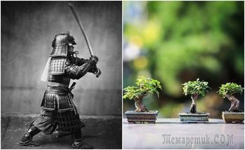 Какие правила соблюдали японские самураи