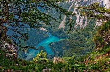 Австрийский парк, который каждое лето превращается в озеро