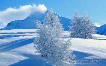 Белоснежная зима (Стих)