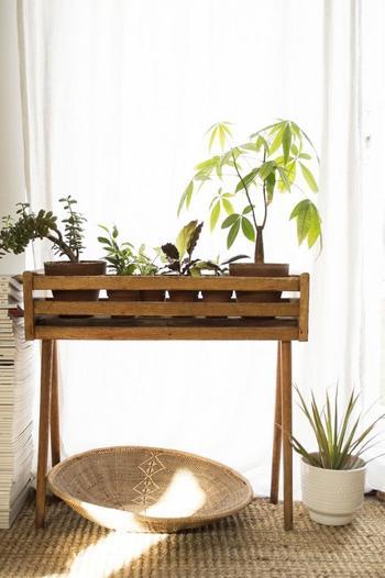 Цветочные ящики — вариант размещения растений для интерьера