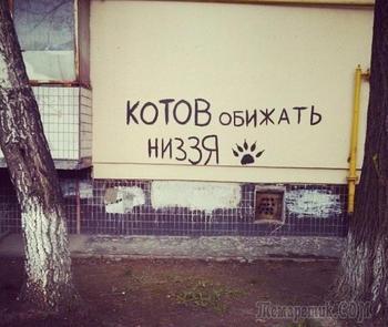 24 надписи на стене, которые дело говорят