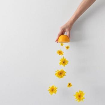 Лёгкие и воздушные минималистичные фотографии Пичайи Баррэу
