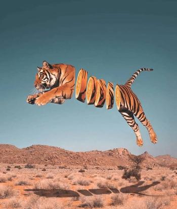 Сюрреалистические фотоманипуляции, в которых художник объединяет животных с едой
