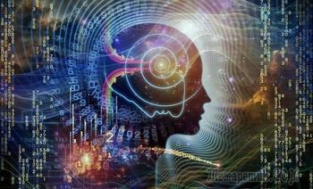 Чудеса многомерного мозга