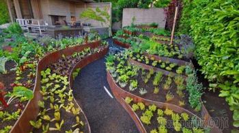 50 идей, как украсить огород и вырастить хороший урожай