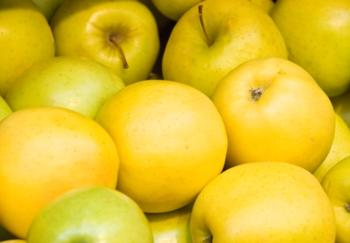 Яблоня «Голден делишес»: описание сорта, фото, отзывы