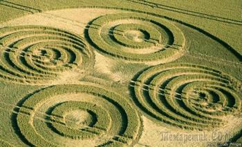 Расшифровка кругов на полях: что там говорят инопланетяни
