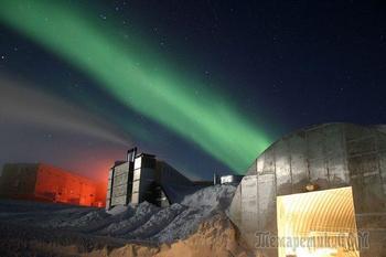 Невероятные факты о жизни на Южном полюсе