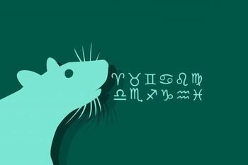 Мужчина Дева-Крыса: характеристика личности
