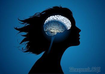 Познавательная информация о мозге: 30 интересных фактов