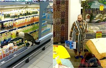 Шопинг-терапия: 17 забавных ситуаций и казусов в магазинах и супермаркетах