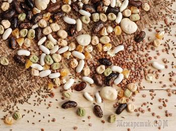 Как правильно нужно замачивать семена перед посадкой