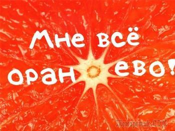 Оранжевое настроение (Стих)