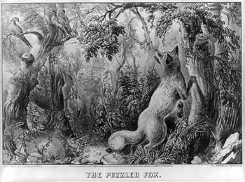 А вы сможете найти всех животных на картинке, которой уже 144 года?