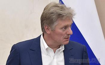 Нервы не сдавали: Песков опроверг слова Авакова о Суркове