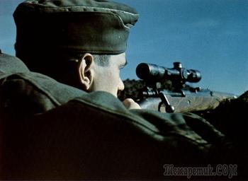 Почему один из самых результативных снайперов вермахта пользовался винтовкой Мосина?