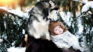 Стихи людям от Волка.