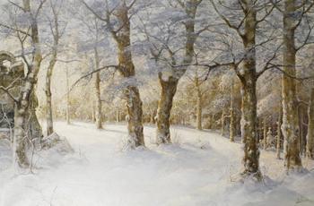Розен Карл. Пейзажи