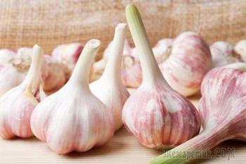 Топ-8 лучших рецептов очищения сосудов чесноком