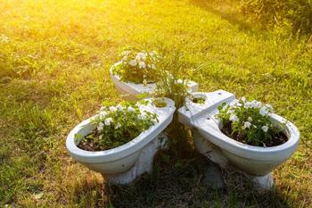 Оригинальные клумбы в саду