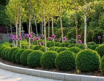 Повторение — простой прием для неповторимых цветников