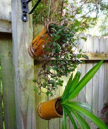 Интересные идеи оформления дома при помощи бамбука