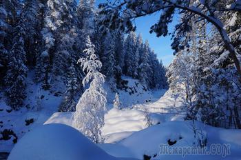 зима на  Киваче . Карелия