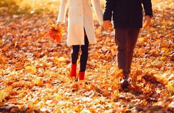 Любовный гороскоп на неделю: всех знаков Зодиака ждут перемены с 12 по 18 ноября