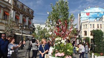 Яблоневый сад в центре Москвы
