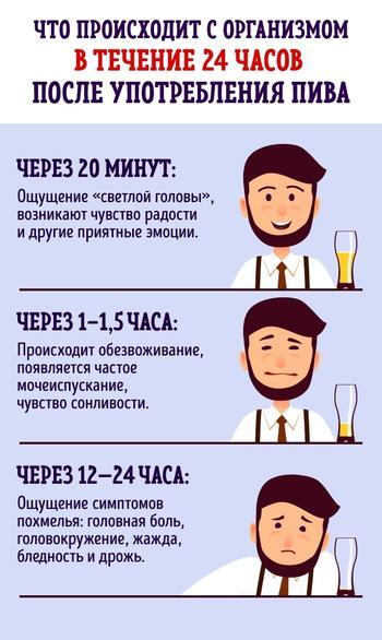 Что будет, если пить пиво каждый день