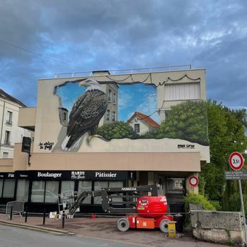 Трёхмерные граффити французского уличного художника Braga Last One
