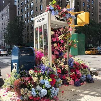 Цветочные клумбы в телефонных клумбах