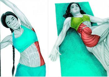 Супер упражнения для боков и талии — тренируем косые мышцы