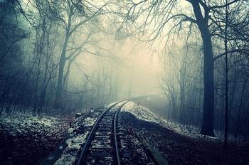 Галлюцинации в лесу