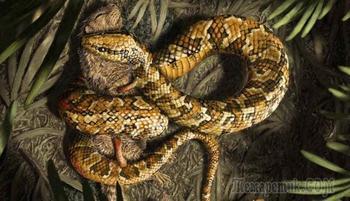 Вымершие животные с удивительными особенностями