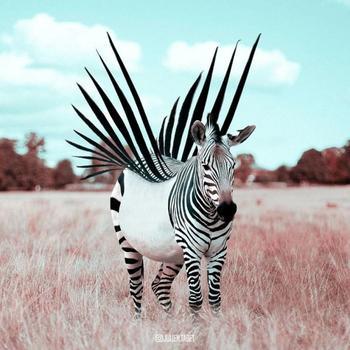 Французский художник умело использует фотошоп для создания фантастических животных