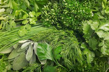 Домашняя экономия: как хранить зелень в холодильнике