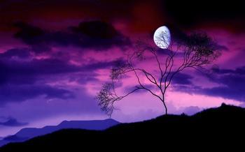 Красивые фото, завораживающие великолепием звездного неба ночью