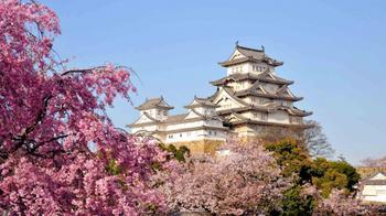 Понаехало: 5 наиболее негостеприимных стран мира, которые терпеть не могут туристов
