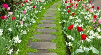 Оригинальные идеи садовых дорожек