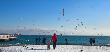 Русская зима в Ялте