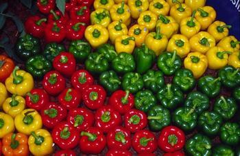 Лучшие разновидности сладкого болгарского перца