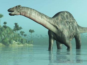 Сибиротитан - новый вид динозавров Сибири