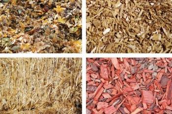 Осеннее мульчирование почвы в саду, цветнике и огороде